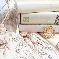 Bookshelf Tour - Mein Bücherregal